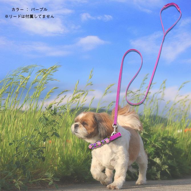 ラロック ローズカラー SSサイズ 【超小型犬用首輪】 イメージ写真4