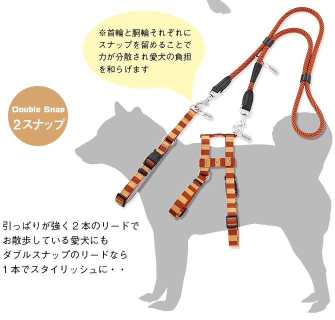 ラロック ミッドウォークリード Lサイズ 【大型犬用リード】 使用例3