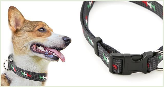 【中型犬用首輪】 ネオタッチカラー Mサイズ