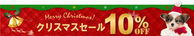クリスマスセール・10%割引クーポン!